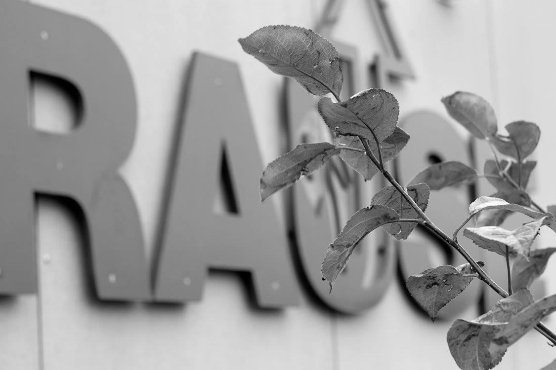 Rause-logo på vegg med en gren foran. Bilde