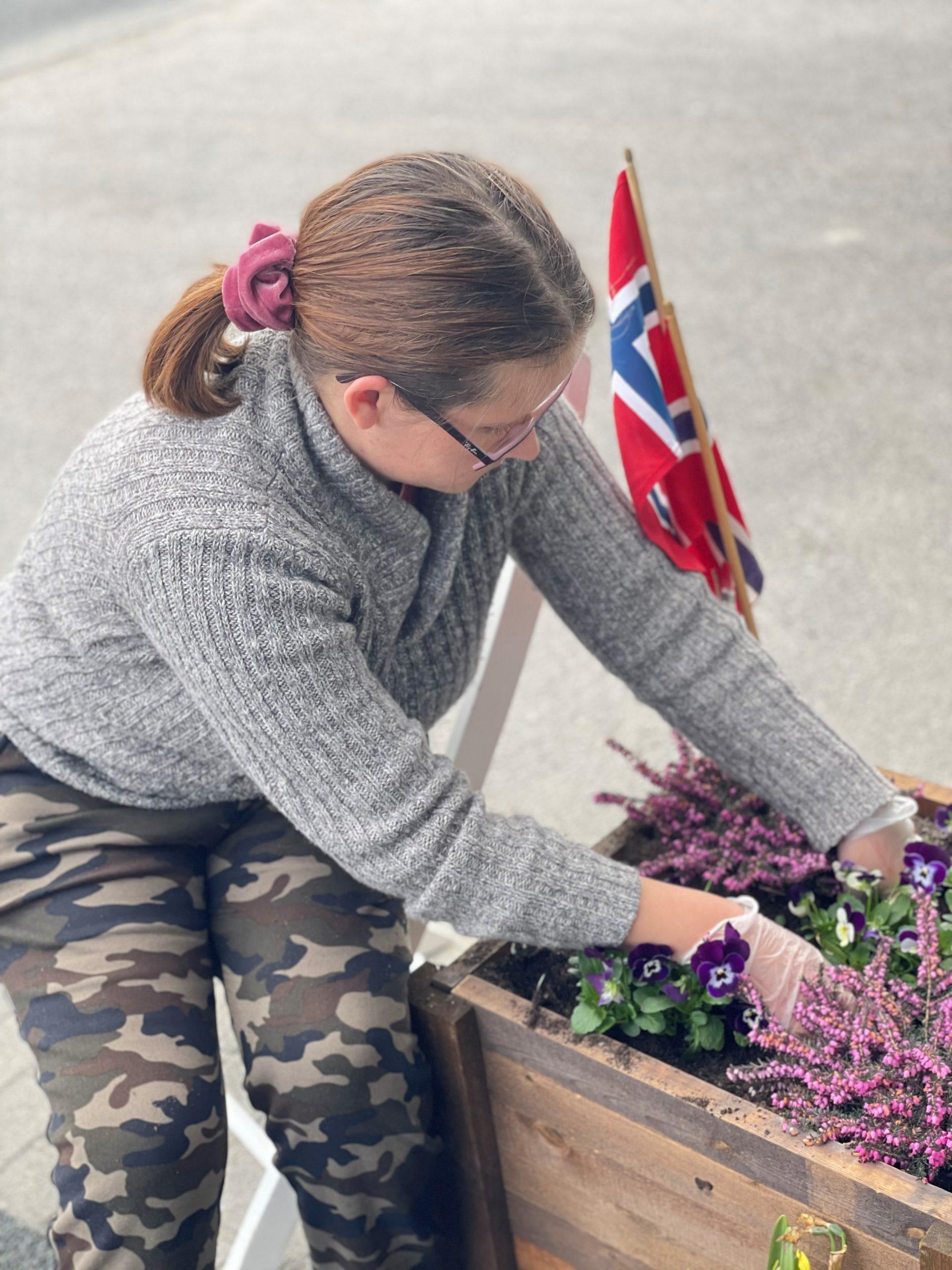 En jente planter i kasse